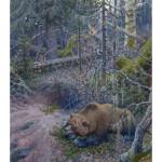 Bear at the den Медведь у берлоги