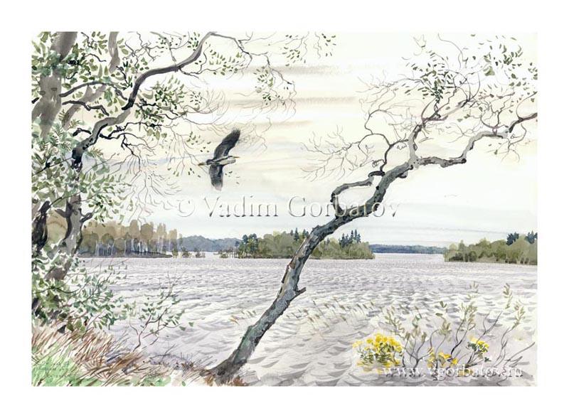 Озеро Лучанское. Тверская область