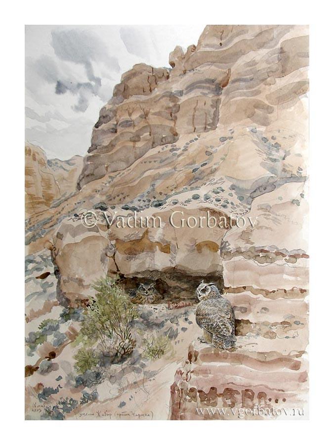Пустынные филины в ущелье Жабыр. Казахстан