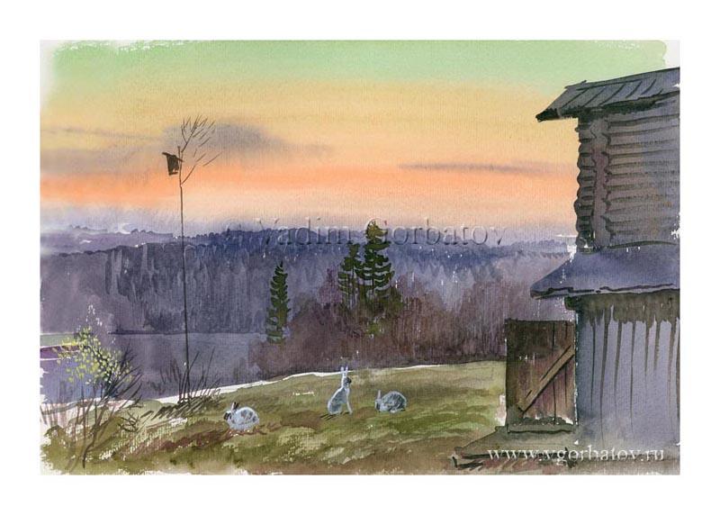 White hare Evening guests Karelia Вечерние гости