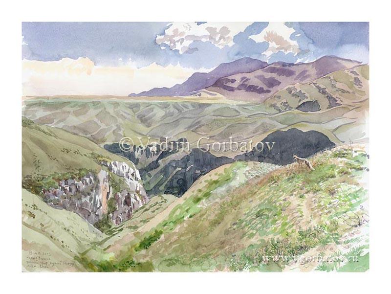 Каньон Чарына. Лиса. Южный Казахстан. The fox. Charyn Canyon, South Kazakhstan