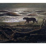 Siberian tiger walks along the seashore Амурский тигр