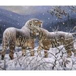 Siberian tigers. В горах Сихоте-Алиня. Tigers love