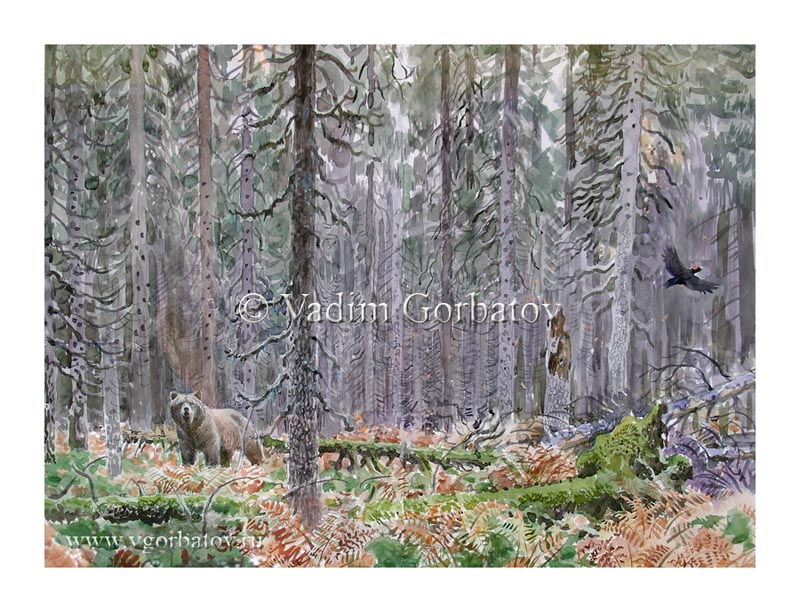 The brown bear Black woodpecker In the middle of the woods В глуши лесов Бурый медведь Желна
