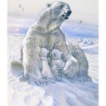На просторах Арктики