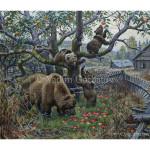 Медведи в старом саду