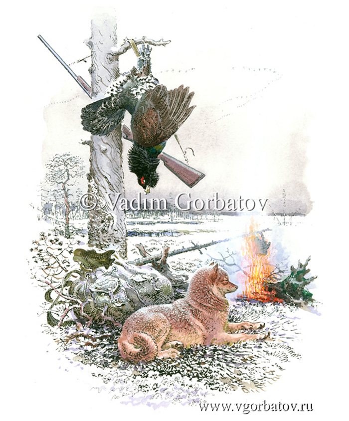 Capercaillie trophy.Hunting with the Karjalan laika